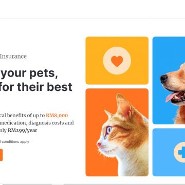 Seed Round for Oyen, a Malaysian Digital-First Pet Healthcare Insurance Provider